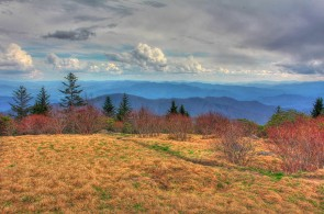 Andrews Bald - Great Smoky Mountains