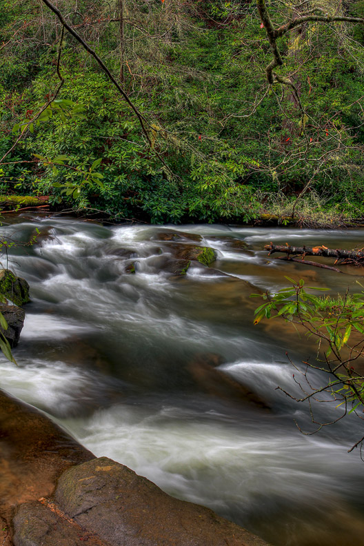 abrams creek smoky mountains